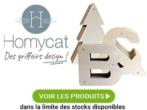 fontaine eau mango pour chat et chien croquetteland. Black Bedroom Furniture Sets. Home Design Ideas