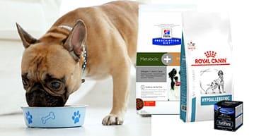 Les croquettes vétérinaire pour chien