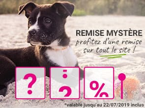 Promo Mystère : profitez d'une remise pour faire plaisir à votre animal