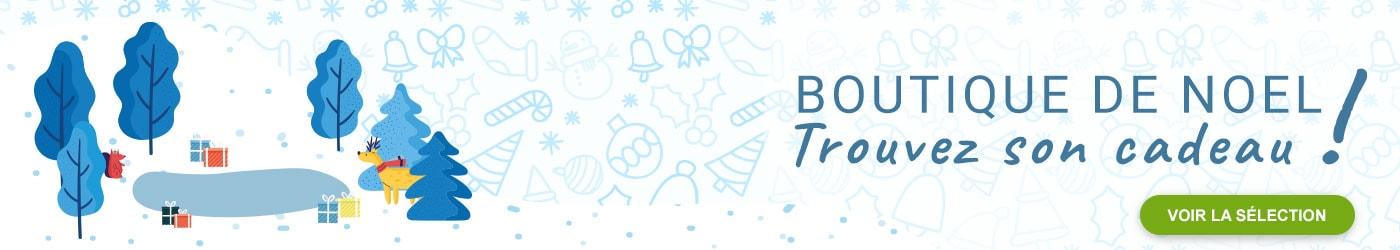 Découvrez la boutique de Noël