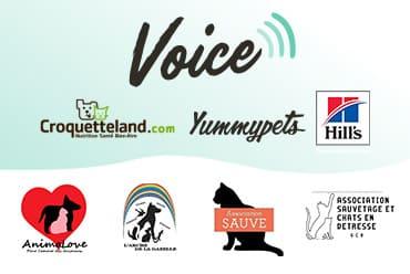Voice : Le clic solidaire pour les animaux !