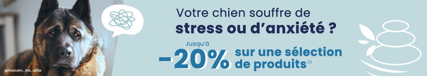 Anti-stress pour chien : jusqu'à 20% de remise sur une sélection
