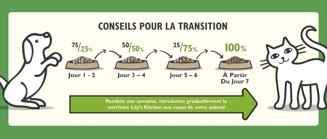 Lily's Kitchen : conseils transition