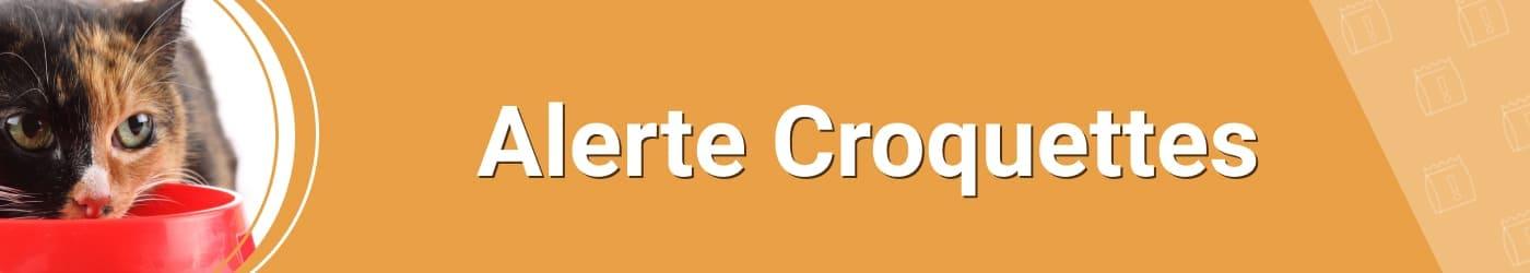 Service : Alerte Croquettes