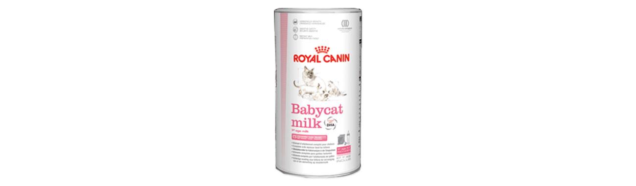 compléments alimentaires chaton