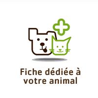 Une fiche dédiée à votre animal !