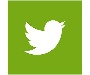 Twitter Croquetteland