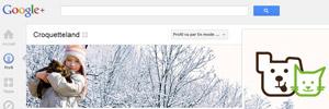 Aperçu de Google+