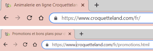 Navigation sécurisée Croquetteland