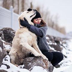 Préparer son chien à l'hiver
