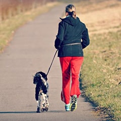 Débuter le sport avec son chien