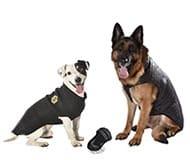 Boutique accessoires pour chien et chiot, animalerie en