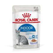 Royal Canin Chat Indoor Sterilised en gelée, sachet