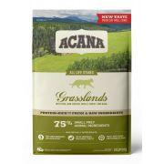 Acana Chat Grasslands, vue de face