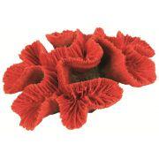 Bouton de corail médium Trixie