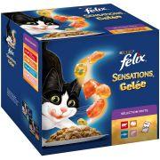 Felix Sensations chat - Sélection Mixte Gelée