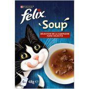 Felix Soup Chat - Sélection Campagne