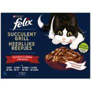 Sachets Felix Succulent Grill Sélection Campagne pour chat