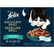 Felix Succulent Grill Chat - Sélection Poissons