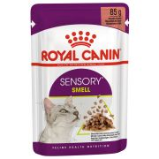 Royal Canin Sensory Smell Gravy pour chat, sachet 85 g
