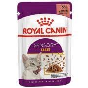 Sachets Royal Canin Sensory Taste Gravy pour chat
