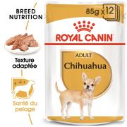 Royal Canin Breed Health Nutrition Chihuahua Adulte – Sachets