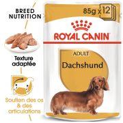 Royal Canin Breed Health Nutrition Teckel Adulte – Sachets