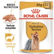 Royal Canin Breed Health Nutrition Yorkshire Terrier Adulte – Sachets