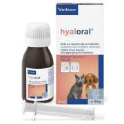 Solution Hyaloral pour chien et chat