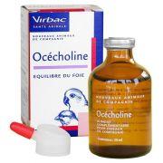 Virbac Ocecholine pour oiseaux