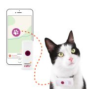 Weenect 2 Cats Collier GPS