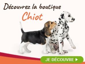 La boutique Chiot